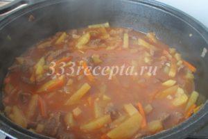 <p>Добавляем картофель и воду. Воды добавляем побольше или поменьше — в зависимости от того, что хотим получить — суп или второе блюдо. Солим, перчим, добавляем специи и тушим на медленном огне до готовности, примерно 30 — 40 минут.</p>